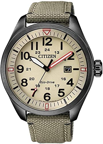 Orologio Citizen AW5005-12X